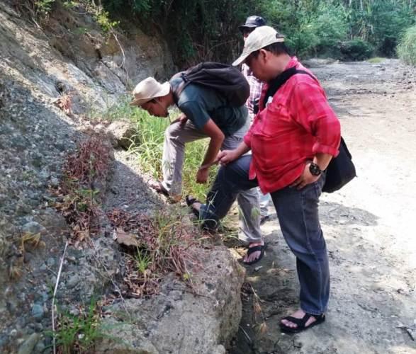 Fosil Manusia Purba 1 8 Juta Tahun Yang Ditemukan Di Bumiayu Tertua Di Indonesia Jatengdaily Com